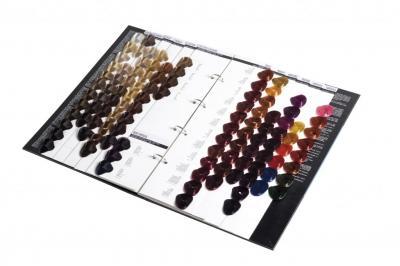 Black Professional Vzorník Barev na vlasy Black Sintesis Color Creme