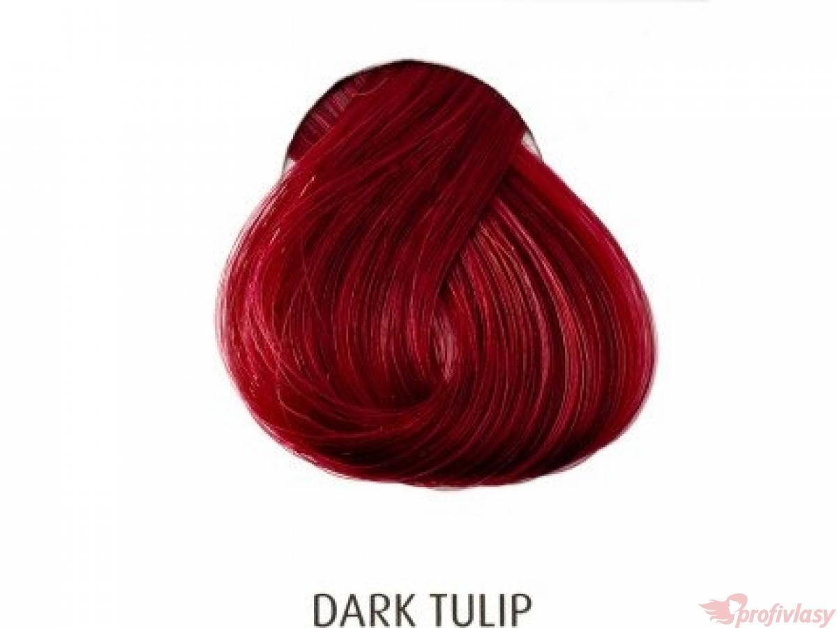 barvy na vlasy directions