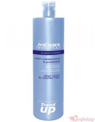 Trend up Šampon na barvené vlasy AntiOxidant 1000ml